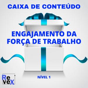 Caixa de Conteúdo da Revex Engajamento da Força de Trabalho Nível 1